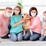 coberturas debe tener un seguro privado de salud